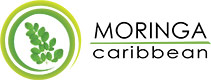 MoringaCaribbean.it